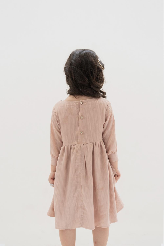 Picture of Petite Briel Dress in Blush